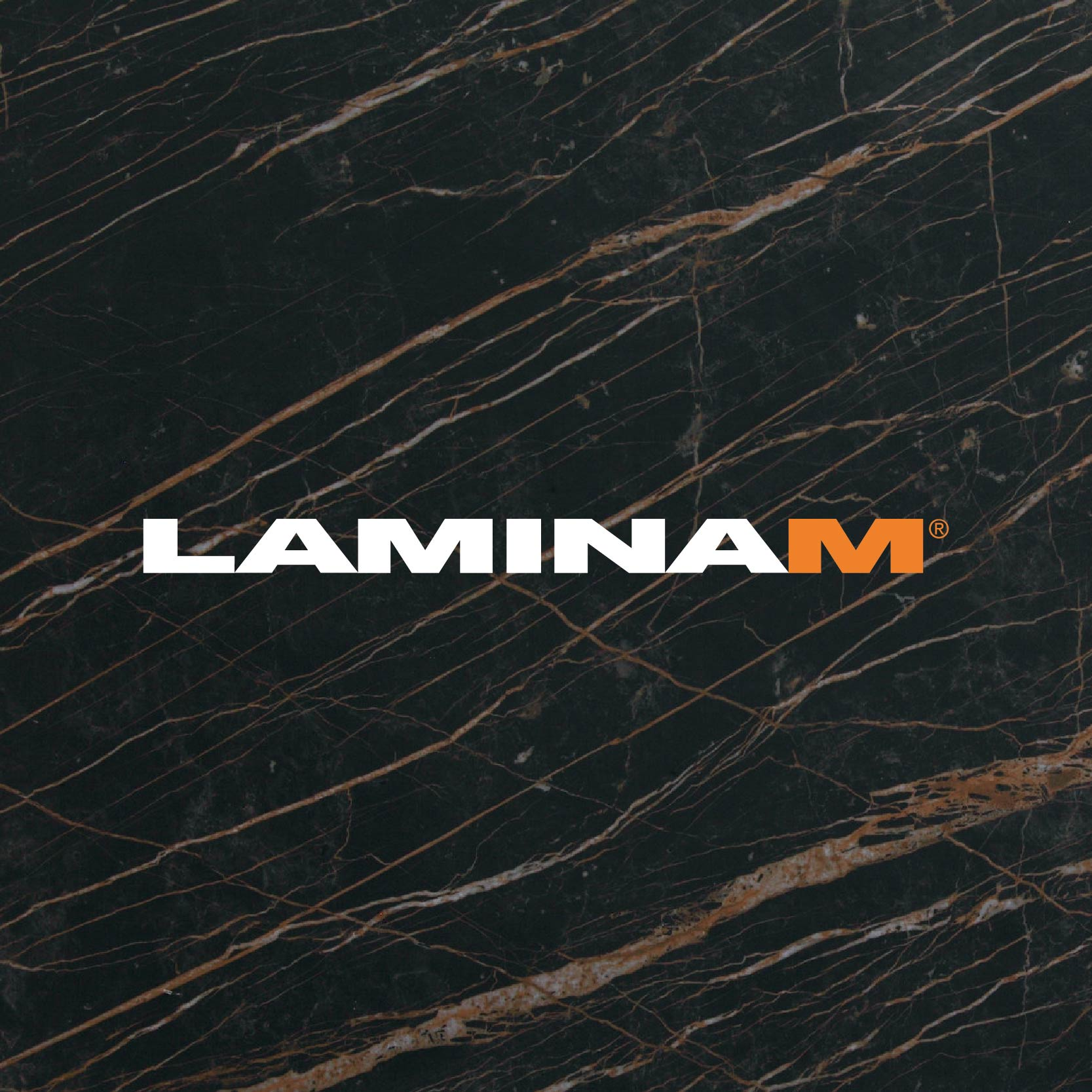lamina_1